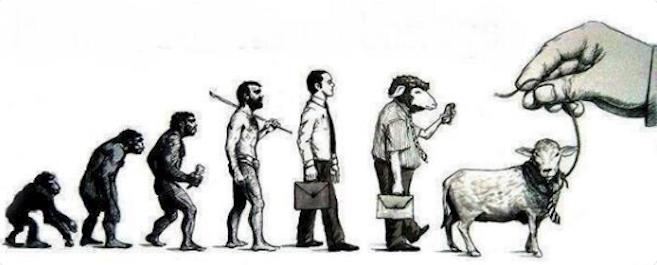 Entwicklung beim Menschen