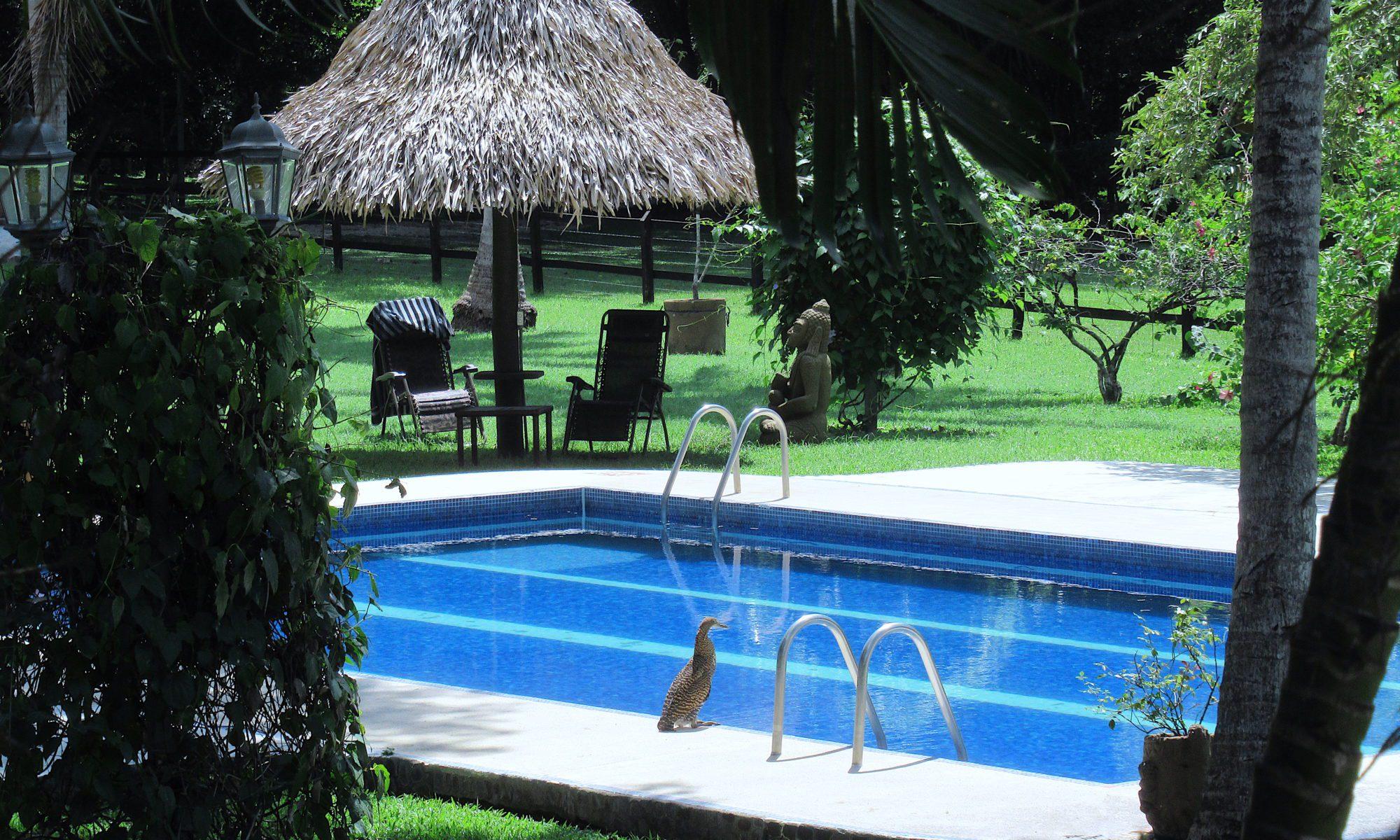 hôtel Costa Rica Samara
