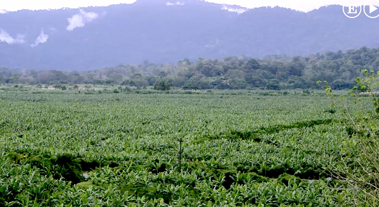 Landschaft Costa Rica